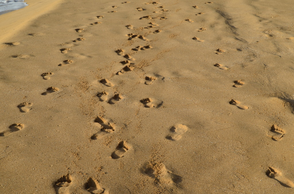 Footprints on Polihale Beach